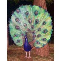 Peacock Sculptures