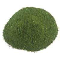 Basic Methyl Violet