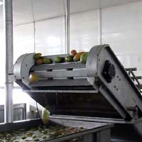 SS Vegetables & Fruits Washer Machine