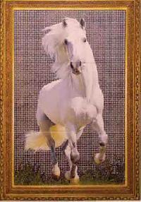 SB Horse 900-600mm Glossy Tiles