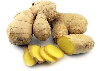 Fresh Ginger