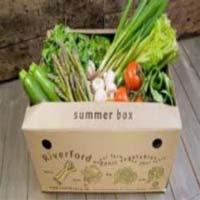 Vegetable Packaging Boxes