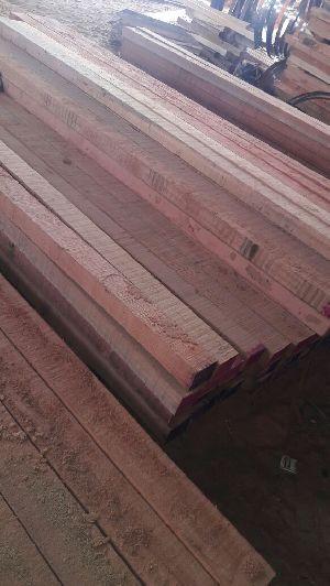 Malaysian Sal Wood 02