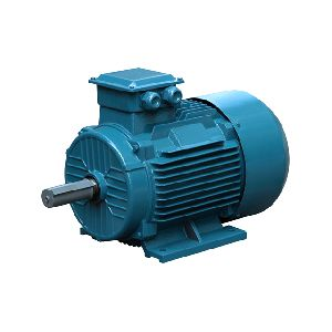 IE2 Cast Iron Frame Three Phase Motor