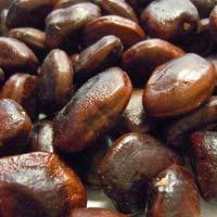 Tamarind Seeds 03