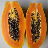 Fresh Pusa Dwarf Papaya