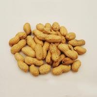 Monkey Nuts 02