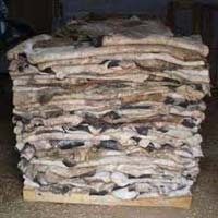 Wet and Dry Salted Cow Hides