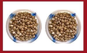 A3 Sirsi Betel Nuts