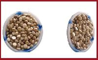 A1 Sirsi Betel Nuts