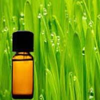 Palmrosa Oil