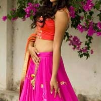 Ehenga Choli with Pinkcolor Lahenga