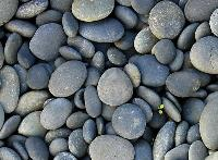 Flat Natural Pebble Stones