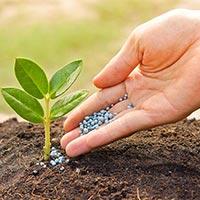 Non Organic Fertilizer