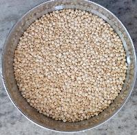 Milky White Quinoa Seeds