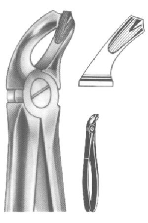 1007 English Pattern Extracting Forcep