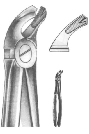1008 English Pattern Extracting Forcep