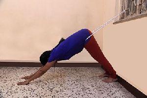 Yoga Courses 04