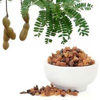 Commiphora Mukul Extract