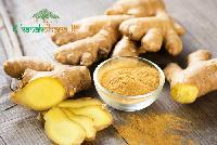 Ginger Extract 03