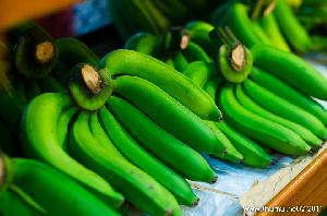Premium Grade Fresh Green Cavendish Banana