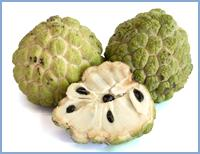 Fresh Sugar Apple