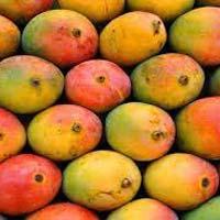 Sindhura Mango