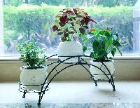 Iron Planter Stands 05