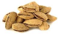 Soft Shelled Almonds
