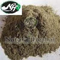 Herbal Bhringraj Powder