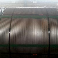 Calcium Silicide Cored Wire (CaSi)