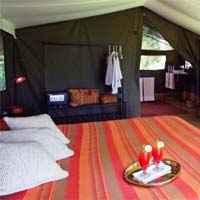 Jungle Safari Resorts Tents 04