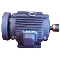 Induction Motor 02