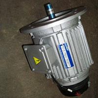 Induction Motor 04