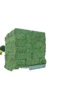 Alfalfa Hay Bale 02