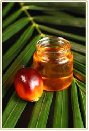 Refined Palm Kernel Oil