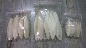 Cuttlefish Bone 07