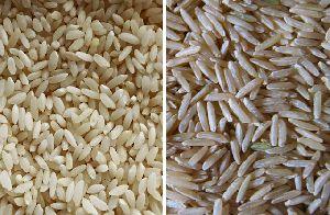 Indian Rice 04