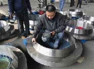 Duplex & Stainless Steel Flanges