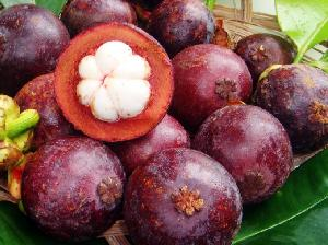 Fresh Mangosteen
