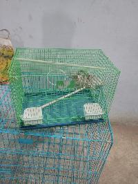 Bird Cage 03