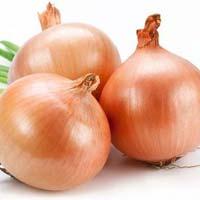 Fresh Onion 01