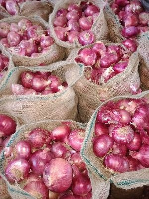 Fresh Red Onion 05