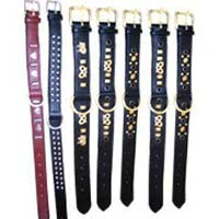 Dog Collar Belts