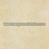 Impression Series Marble Tile (HGP8810)