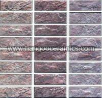 Inkjet Series Outdoor Tile (JS-01C  JS-01N  JS-01T)