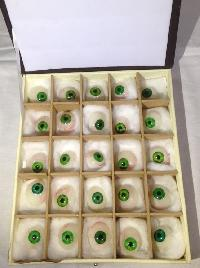 Green Prosthetic Eye ( Box of 25 Pieces )