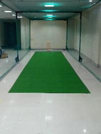 Cricket Turf Pitch Grass