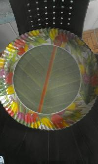 Coloured Disposable Plate 01
