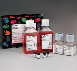 Protein Mass Spectrometry Kit